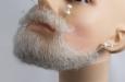 борода средняя седая